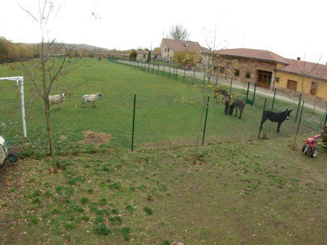 Bungalows Granja Escuela Arlanzón (Arlazón, Palencia)